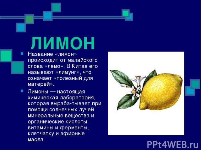 ЛИМОН Название «лимон» происходит от малайского слова «лемо». В Китае его называют «лимунг», что означает «полезный для матерей». Лимоны — настоящая химическая лаборатория, которая выраба тывает при помощи солнечных лучей минеральные вещества и орга…