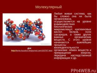 Молекулярный Любая живая система, как бы сложно она ни была организована, осущес