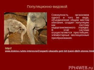 Популяционно-видовой Совокупность организмов одного и того же вида, объединенная