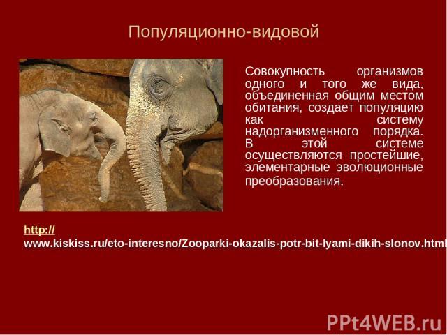 Популяционно-видовой Совокупность организмов одного и того же вида, объединенная общим местом обитания, создает популяцию как систему надорганизменного порядка. В этой системе осуществляются простейшие, элементарные эволюционные преобразования. http…