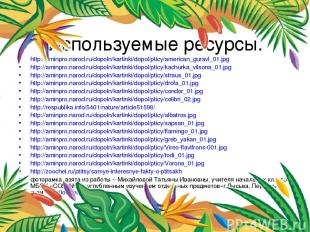 Используемые ресурсы. http://aminpro.narod.ru/dopoln/kartinki/dopol/pticy/americ