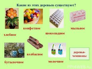 Какие из этих деревьев существуют? хлебное колбасное молочное бутылочное конфетн