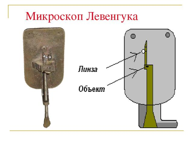 Микроскоп Левенгука