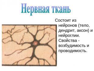 Состоит из нейронов (тело, дендрит, аксон) и нейроглии. Свойства - возбудимость