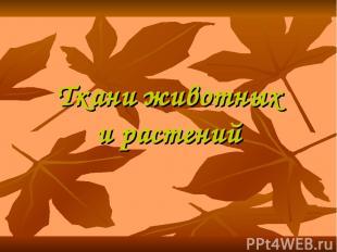 Ткани животных и растений