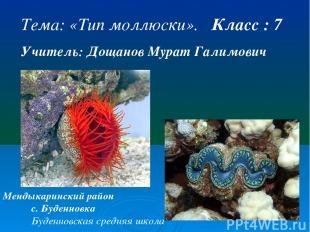 Тема: «Тип моллюски». Класс : 7 Учитель: Дощанов Мурат Галимович Мендыкаринский