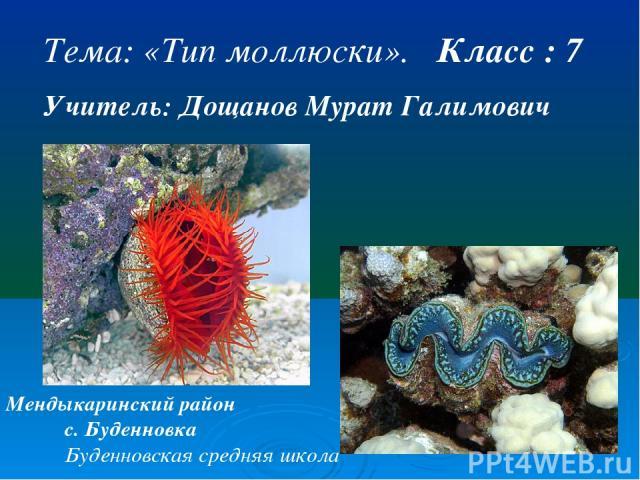 Тема: «Тип моллюски». Класс : 7 Учитель: Дощанов Мурат Галимович Мендыкаринский район с. Буденновка Буденновская средняя школа