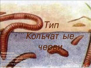 Тип Кольчатые черви Разработал: Учитель биологии МОУ «Первомайская СОШ» Истринск