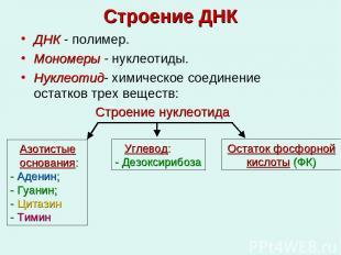 Строение ДНК ДНК - полимер. Мономеры - нуклеотиды. Нуклеотид- химическое соедине