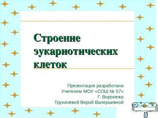 Строение эукариотических клеток Презентация разработана Учителем МОУ «СОШ № 57»