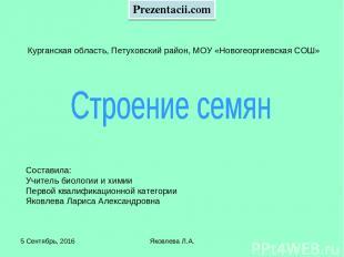* Яковлева Л.А. Курганская область, Петуховский район, МОУ «Новогеоргиевская СОШ