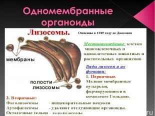 Сусанинская средняя школа учитель биологии Карпушева Анна Эдуардовна Сусанинская