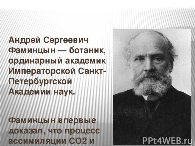 Андрей Сергеевич Фаминцын — ботаник, ординарный академик Императорской Санкт-Петербургской Академии наук. Фаминцын впервые доказал, что процесс ассимиляции CO2 и образование крахмала в зелёных клетках водорослей могут происходить не только при естес…