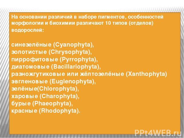 На основании различий в наборе пигментов, особенностей морфологии и биохимии различают 10 типов (отделов) водорослей: синезелёные(Cyanophyta), золотистые(Chrysophyta), пиррофитовые(Pyrrophyta), диатомовые(Bacillariophyta), разножгутиковые илиж…