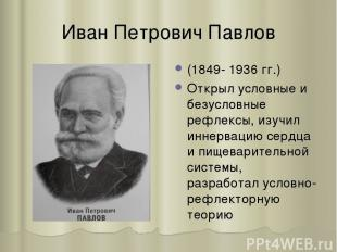 Иван Петрович Павлов (1849- 1936 гг.) Открыл условные и безусловные рефлексы, из