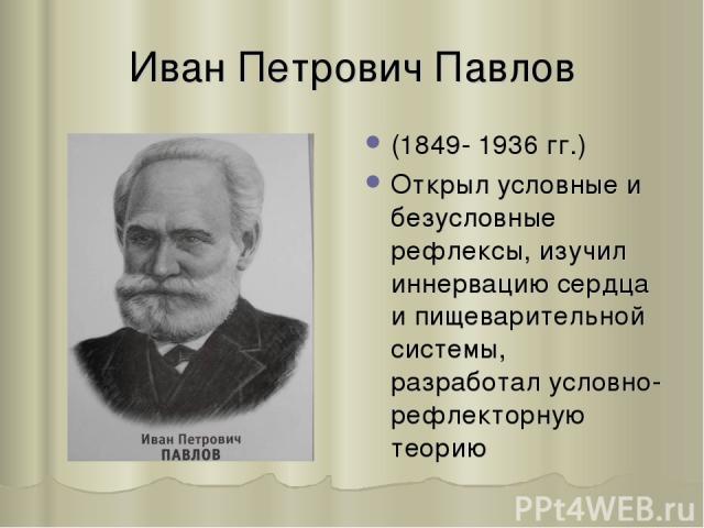 Иван Петрович Павлов (1849- 1936 гг.) Открыл условные и безусловные рефлексы, изучил иннервацию сердца и пищеварительной системы, разработал условно-рефлекторную теорию