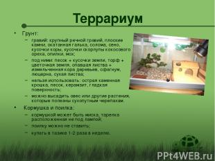 Террариум Грунт: гравий: крупный речной гравий, плоские камни, окатанная галька,
