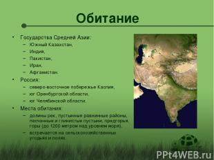 Обитание Государства Средней Азии: Южный Казахстан, Индия, Пакистан, Иран, Афган
