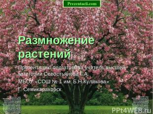 Размножение растений Презентацию подготовила учитель высшей категории Севостьяно