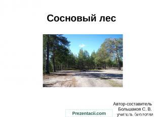 Сосновый лес Автор-составитель Большаков С. В. учитель биологии Prezentacii.com