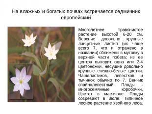 На влажных и богатых почвах встречается седмичник европейский Многолетнее травян
