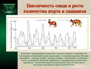Цикличность спада и роста количества жертв и хищников Изучение информации позвол