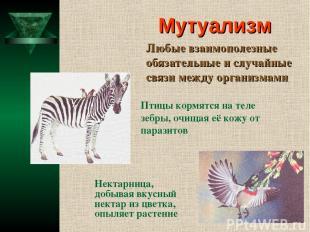 Мутуализм Любые взаимополезные обязательные и случайные связи между организмами