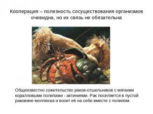 Кооперация – полезность сосуществования организмов очевидна, но их связь не обяз