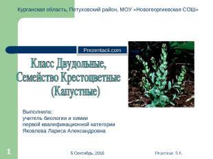 * Яковлева Л.А. * Курганская область, Петуховский район, МОУ «Новогеоргиевская С