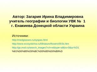 Автор: Загария Ирина Владимировна учитель географии и биологии УВК № 1 г. Енакие