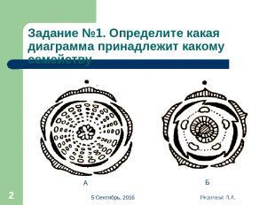 * Яковлева Л.А. * Задание №1. Определите какая диаграмма принадлежит какому семе