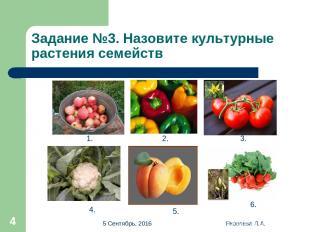 * Яковлева Л.А. * Задание №3. Назовите культурные растения семейств 1. 2. 3. 4.