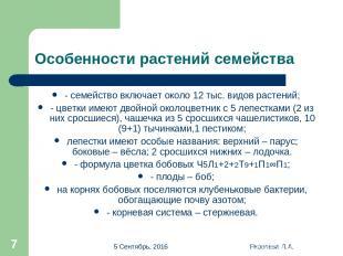 * Яковлева Л.А. * Особенности растений семейства - семейство включает около 12 т