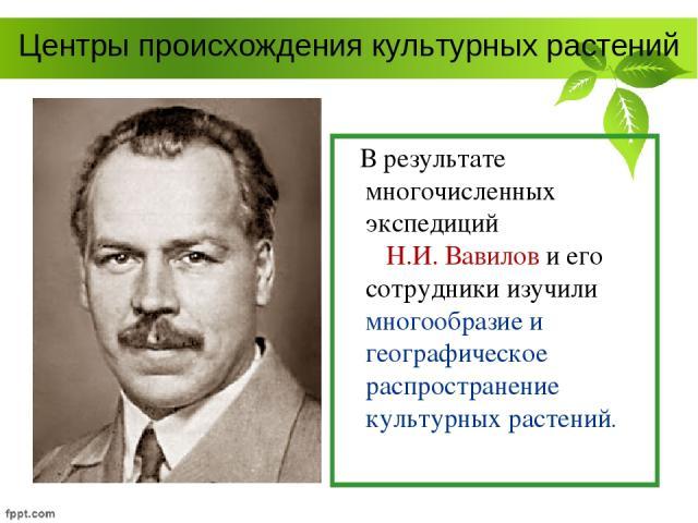 Центры происхождения культурных растений В результате многочисленных экспедиций Н.И. Вавилов и его сотрудники изучили многообразие и географическое распространение культурных растений.