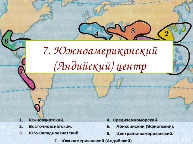 Южноазиатский. Восточноазиатский. Юго-Западноазиатский. 4. Средиземноморский. Абиссинский (Эфиопский). Центральноамериканский. 7. Южноамериканский (Андийский) 1. Южноазиатский центр 2. Восточноазиатский центр 3. Юго-Западноазиатский центр 4. Средизе…