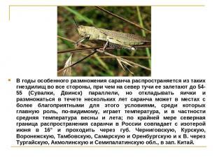 В годы особенного размножения саранча распространяется из таких гнездилищ во все