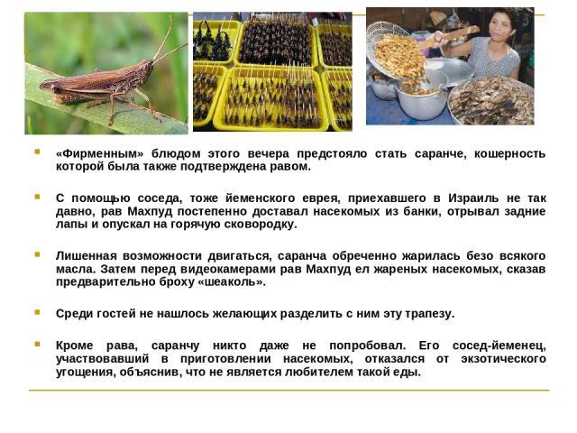 «Фирменным» блюдом этого вечера предстояло стать саранче, кошерность которой была также подтверждена равом. С помощью соседа, тоже йеменского еврея, приехавшего в Израиль не так давно, рав Махпуд постепенно доставал насекомых из банки, отрывал задни…