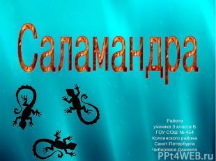 Работа ученика 3 класса Б ГОУ СОШ № 454 Колпинского района Санкт-Петербурга Чиби