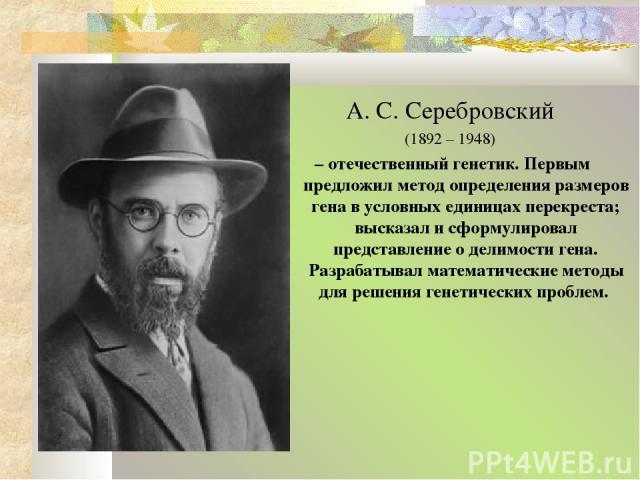 А. С. Серебровский (1892 – 1948) – отечественный генетик. Первым предложил метод определения размеров гена в условных единицах перекреста; высказал и сформулировал представление о делимости гена. Разрабатывал математические методы для решения генети…