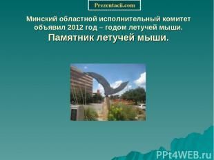 Минский областной исполнительный комитет объявил 2012 год – годом летучей мыши.