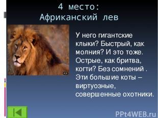 4 место: Африканский лев У него гигантские клыки? Быстрый, как молния? И это тож