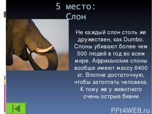 5 место: Слон Не каждый слон столь же дружествен, как Dumbo. Слоны убивают более