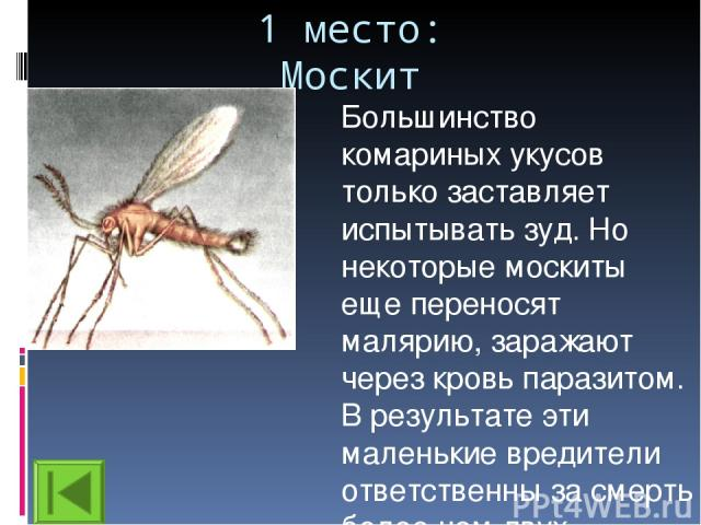 1 место: Москит Большинство комариных укусов только заставляет испытывать зуд. Но некоторые москиты еще переносят малярию, заражают через кровь паразитом. В результате эти маленькие вредители ответственны за смерть более чем двух миллионов человек в год.