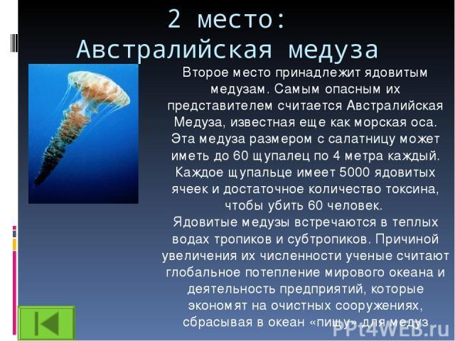 2 место: Австралийская медуза Второе место принадлежит ядовитым медузам. Самым опасным их представителем считается Австралийская Медуза, известная еще как морская оса. Эта медуза размером с салатницу может иметь до 60 щупалец по 4 метра каждый. Кажд…