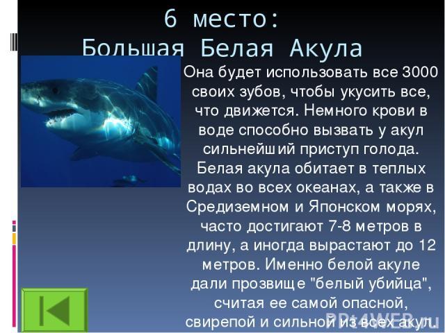 6 место: Большая Белая Акула Она будет использовать все 3000 своих зубов, чтобы укусить все, что движется. Немного крови в воде способно вызвать у акул сильнейший приступ голода. Белая акула обитает в теплых водах во всех океанах, а также в Средизем…