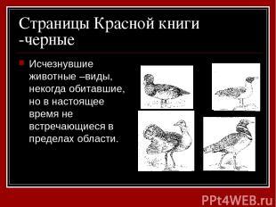 Страницы Красной книги -черные Исчезнувшие животные –виды, некогда обитавшие, но