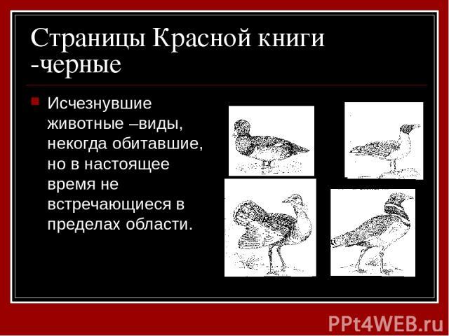 Страницы Красной книги -черные Исчезнувшие животные –виды, некогда обитавшие, но в настоящее время не встречающиеся в пределах области.