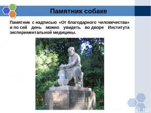 Памятник снадписью «Отблагодарного человечества» ипосей день можно увидеть в