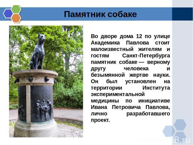 Во дворе дома 12 по улице Академика Павлова стоит малоизвестный жителям и гостям Санкт-Петербурга памятник собаке— верному другу человека и безымянной жертве науки. Он был установлен на территории Института экспериментальной медицины по инициативе …
