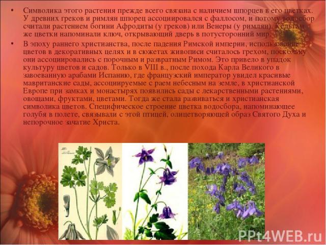 Символика этого растения прежде всего связана с наличием шпорцев в его цветках. У древних греков и римлян шпорец ассоциировался с фаллосом, и потому водосбор считали растением богини Афродиты (у греков) или Венеры (у римлян). Кельтам же цветки напом…